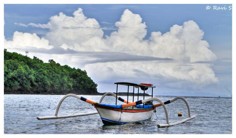 Colourful Fishing