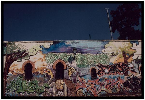 El oficio del graffitero (Granada, nov. 2009)
