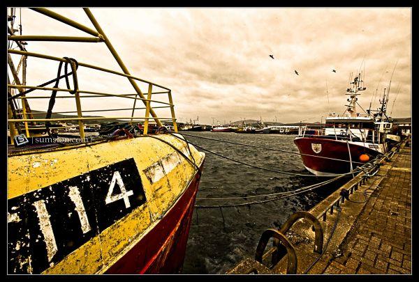 Dingle Harbor, County Kerry, Ireland