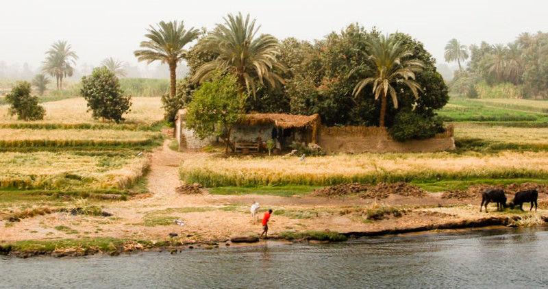 Perduts pel Nil