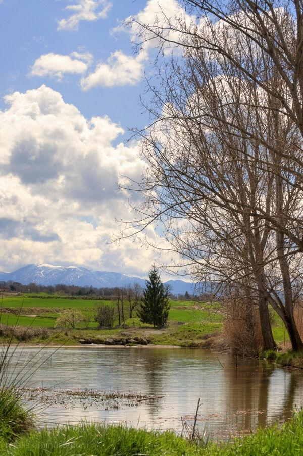 Tranquil·litat vora la bassa