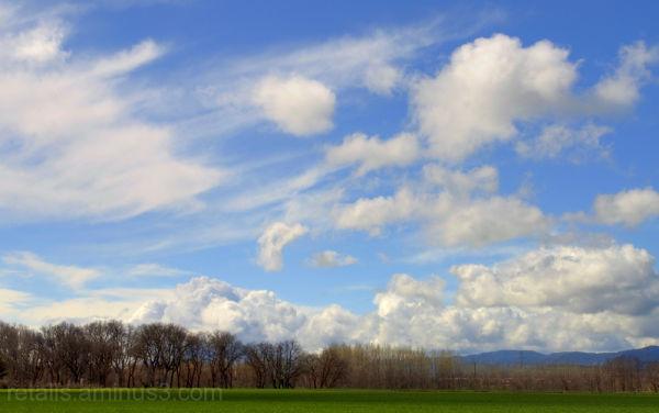 Núvols per no deixar mai de somiar