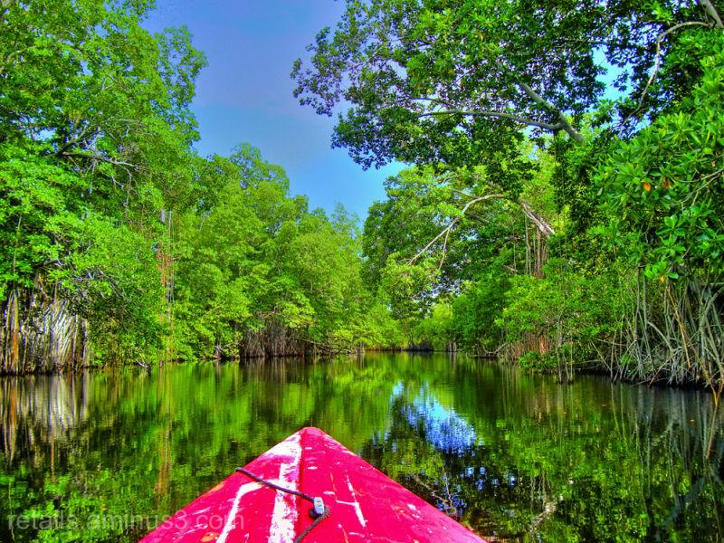 Navegant pel Black River