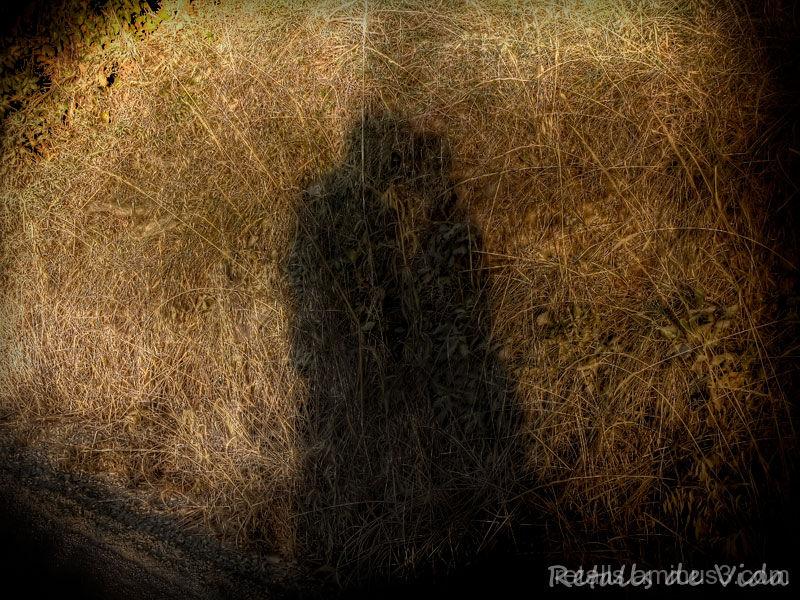 Petó entre ombres
