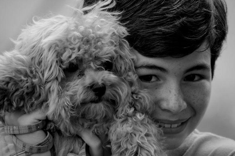 My Dog Sweetest!
