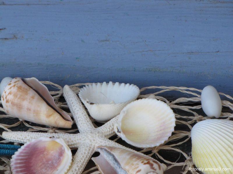 She sells sea shells on the sea shore