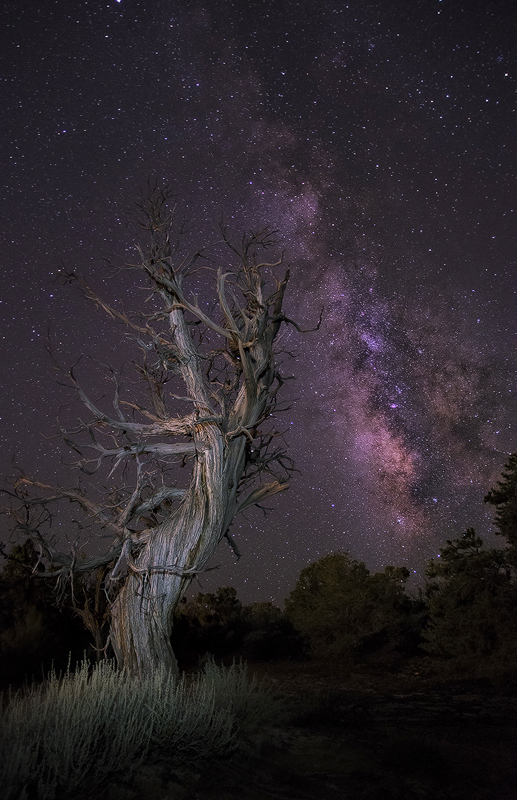 milky way over colorado night sky