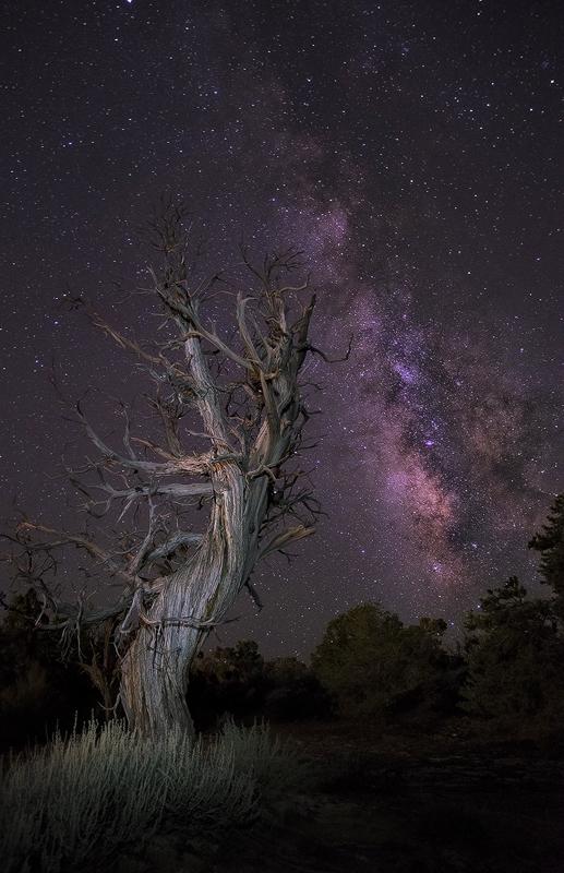 milky way over colorado night sky