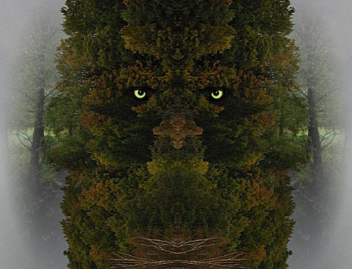 Forest Troll....