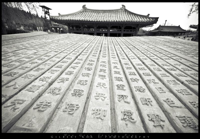 roof of china
