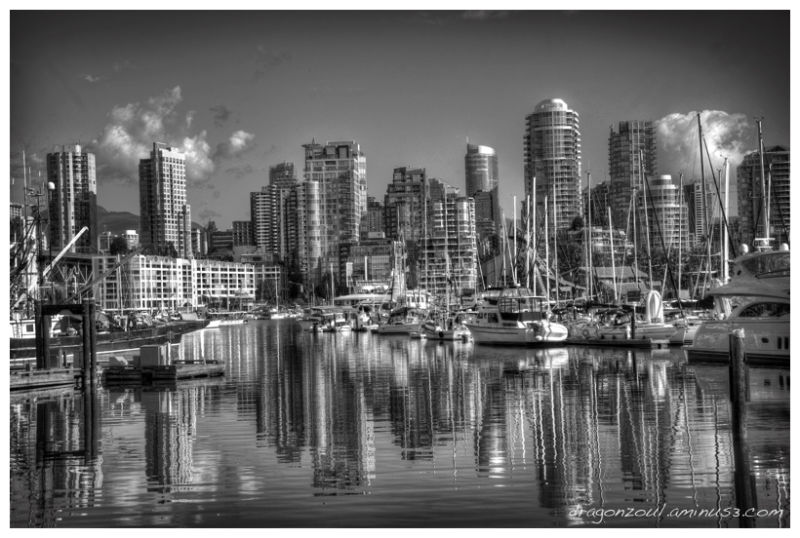 Vancouver a tribute