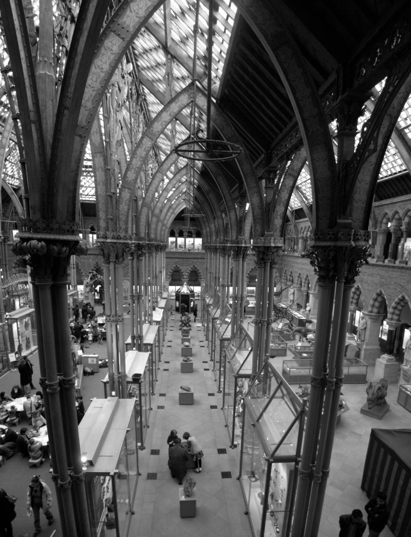 Interior of Natural History Museum, Oxford