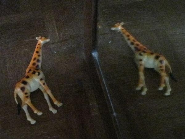 girafe mirror