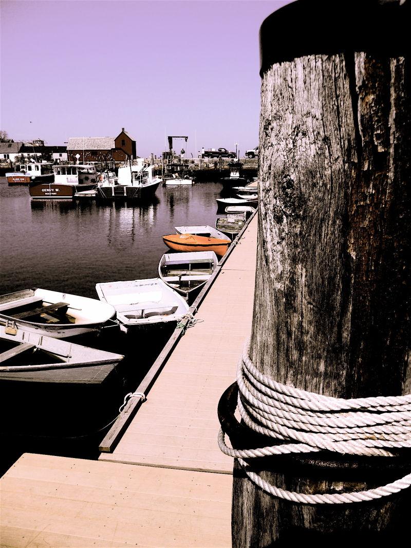 the life of a dock pillar