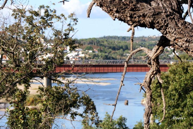 Ponte ferroviária de Constância
