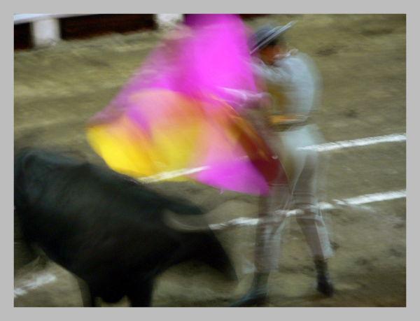 Toros y movimiento 6, Bullfight and movement 6