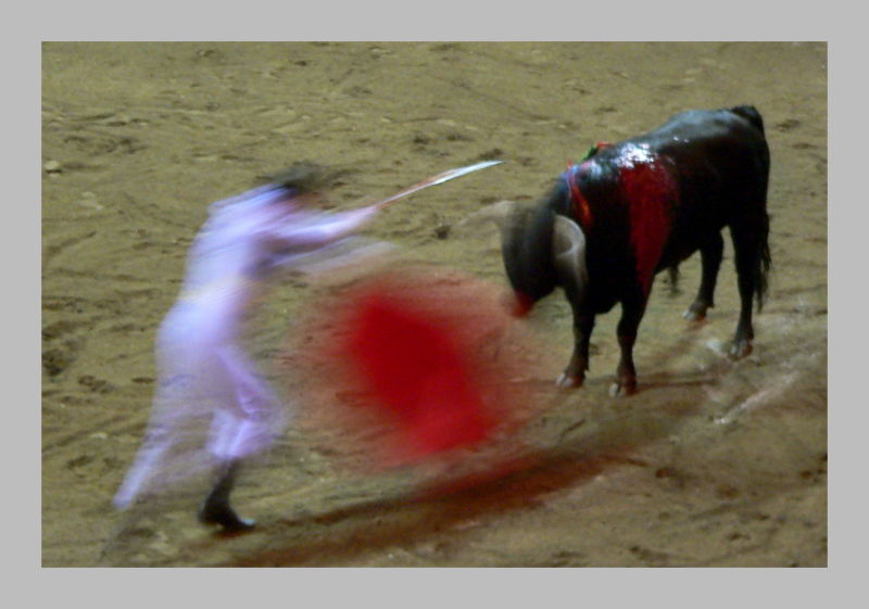 Toros y movimiento 9, Bullfight and movement 9