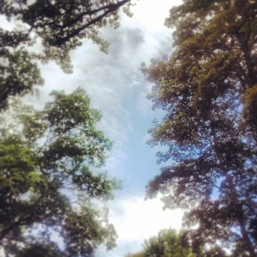 hacia el cielo