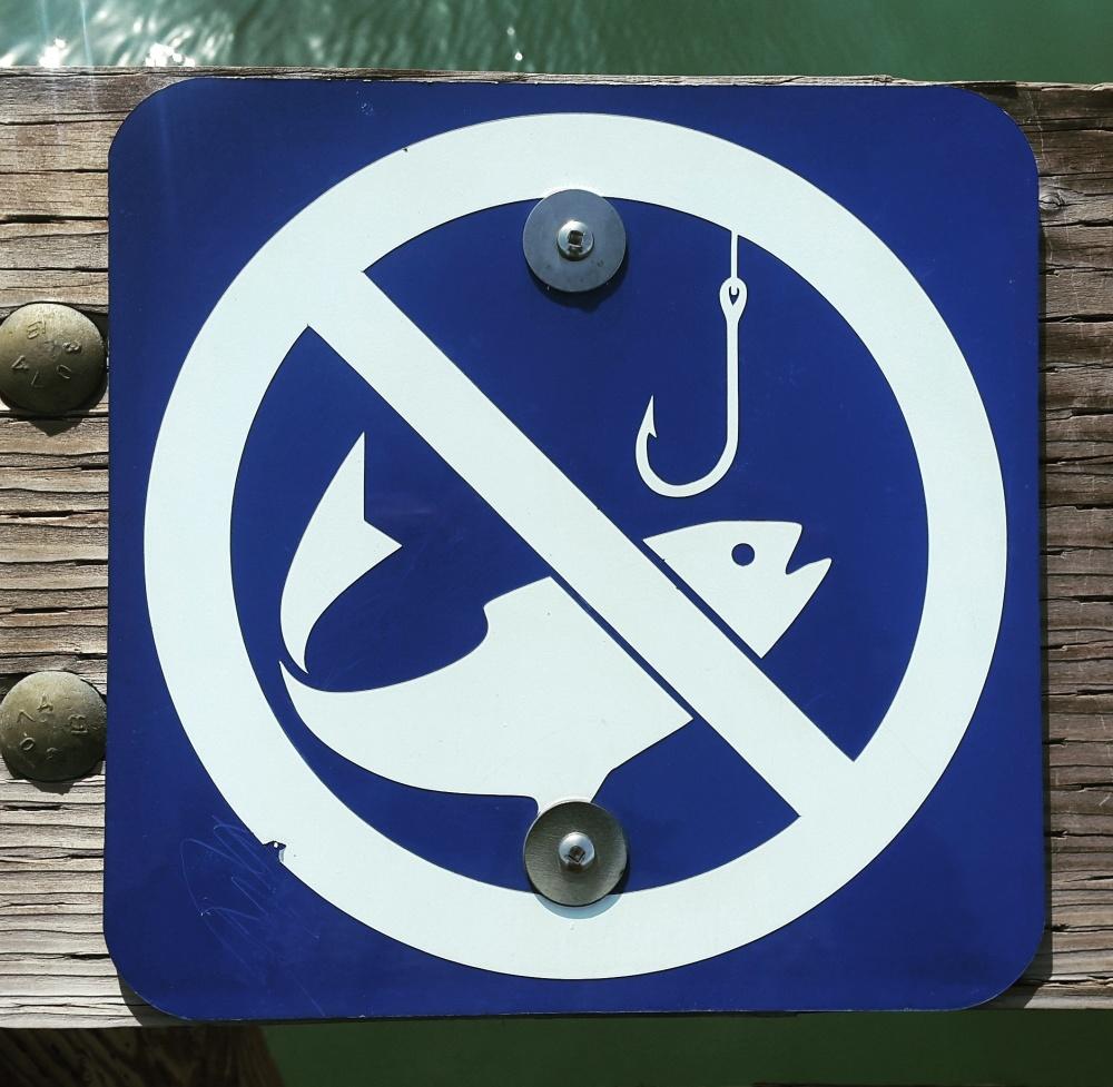 No pescar