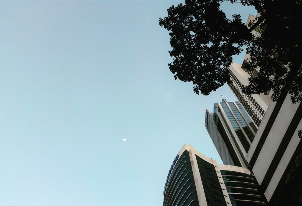 Torre y arbol