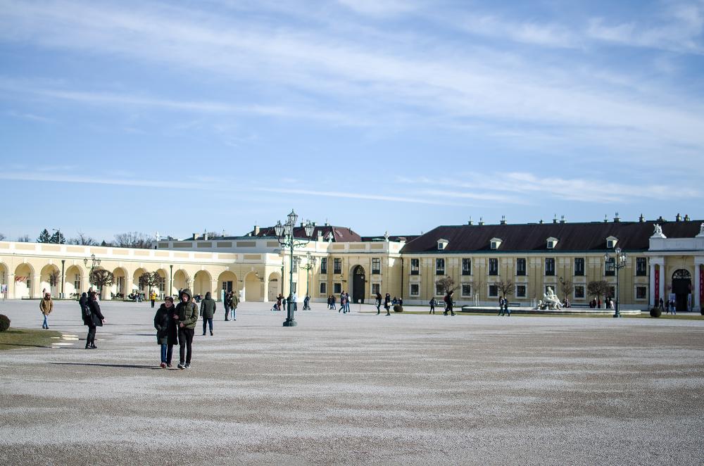 Vienna #42