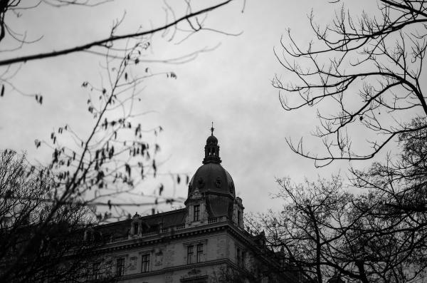 Vienna #84