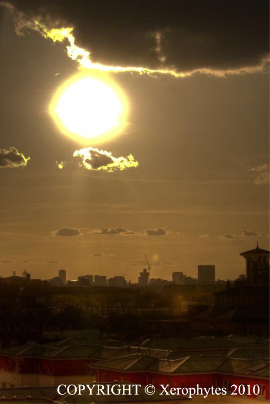 Sun Series: Shine
