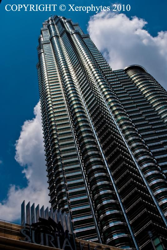 Petronas Twin Towers I