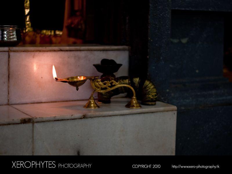 The Arti Lamp