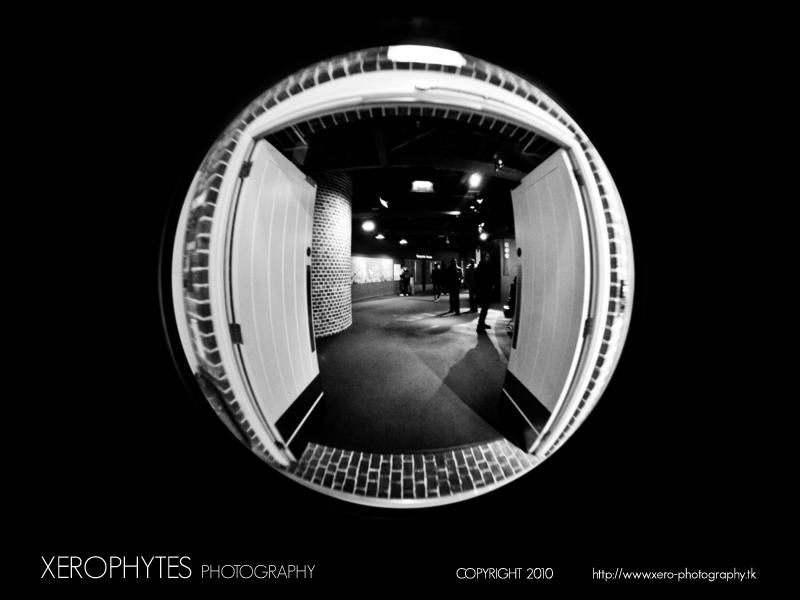 Fish Eye Series: Open