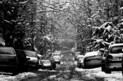snowy day in tehran