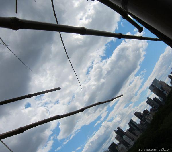 Big Bambu at the Met
