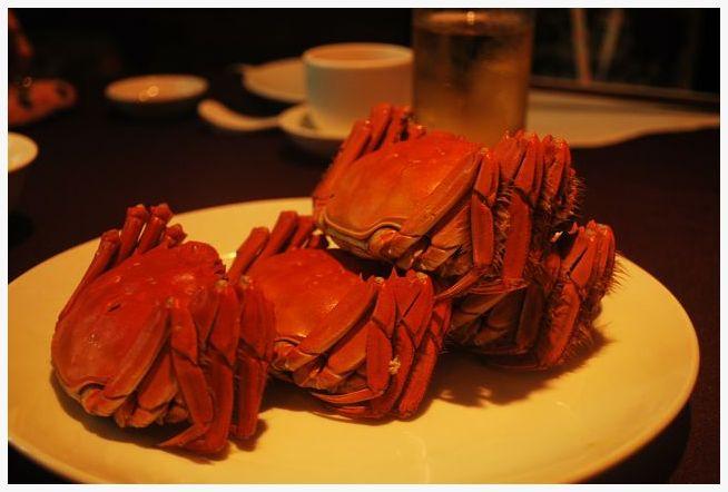 上海蟹 Shanghai crab