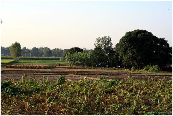 India through Indian Railways -- 6