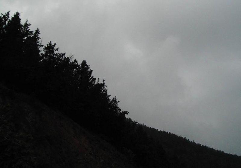 nature.aj.binam
