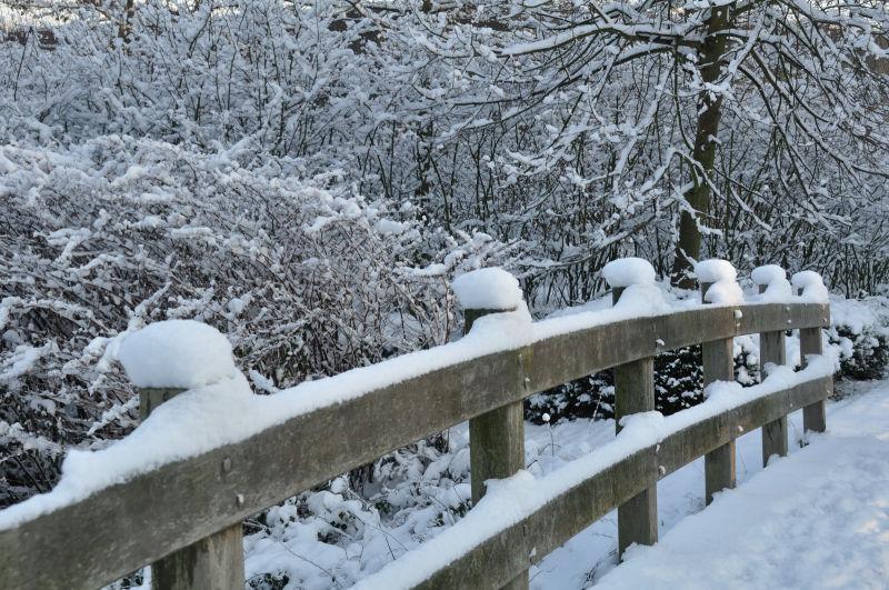 Snow landscape 1/8