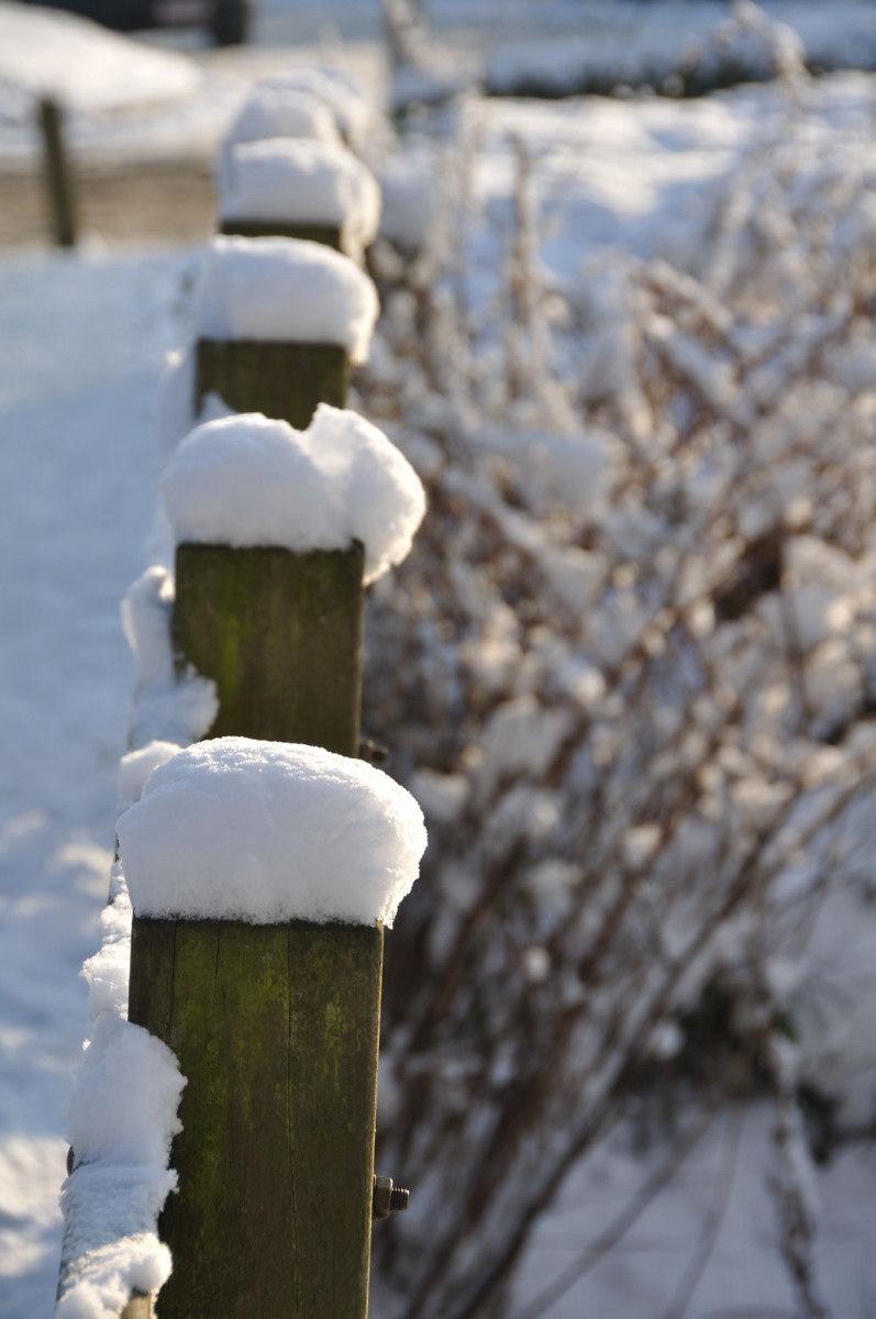 Snow landscape 3/8