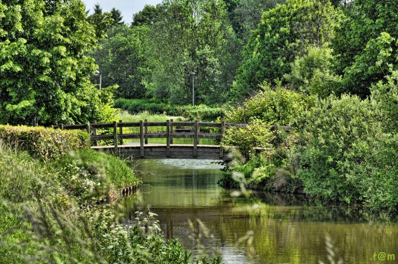The Demer River - Aarschot 2/2