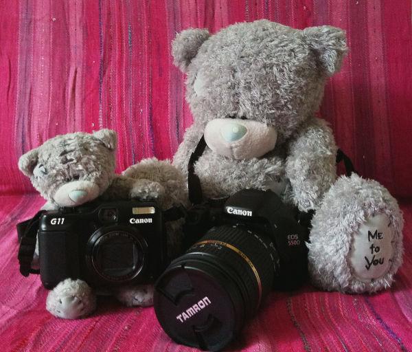 New Canon equipment
