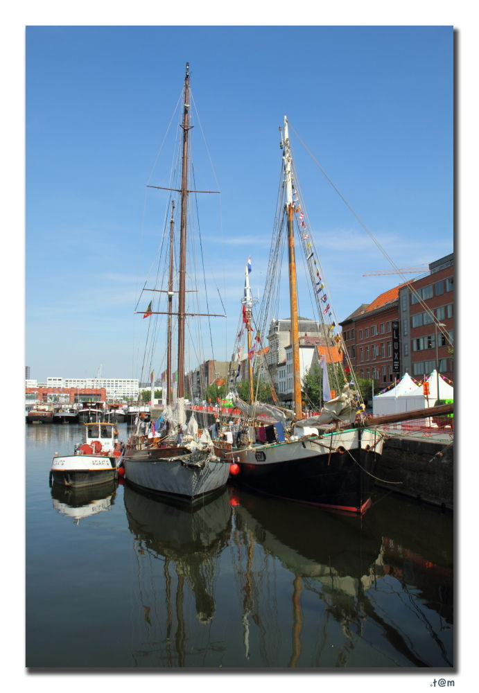 Tall Ships Races 2010 - Antwerp