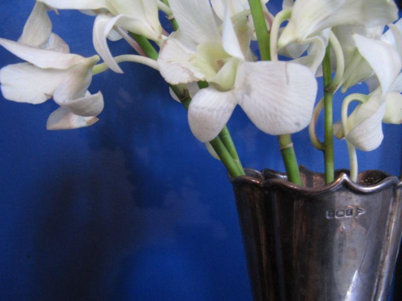 Still Life Orchids Pewter Vase