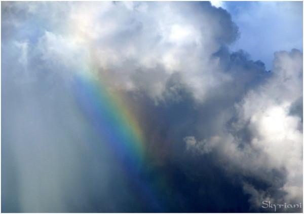 Kiribati Rainbow