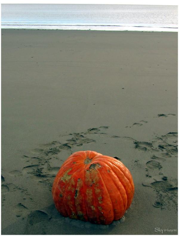 Washed up pumpkin