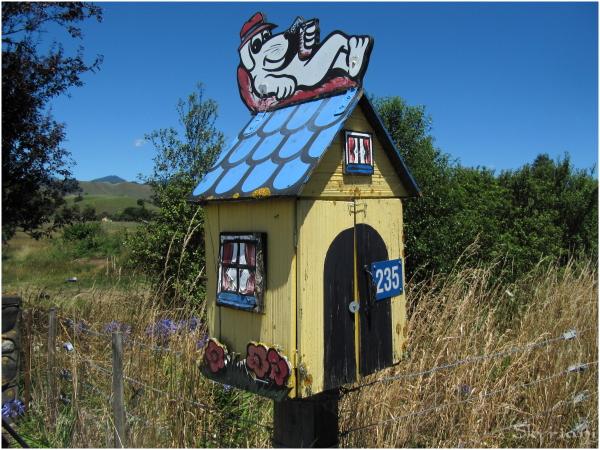 Kiwi letterbox