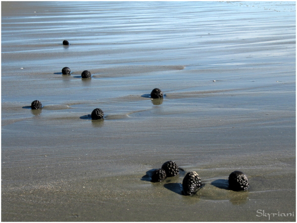 Beach Cones II