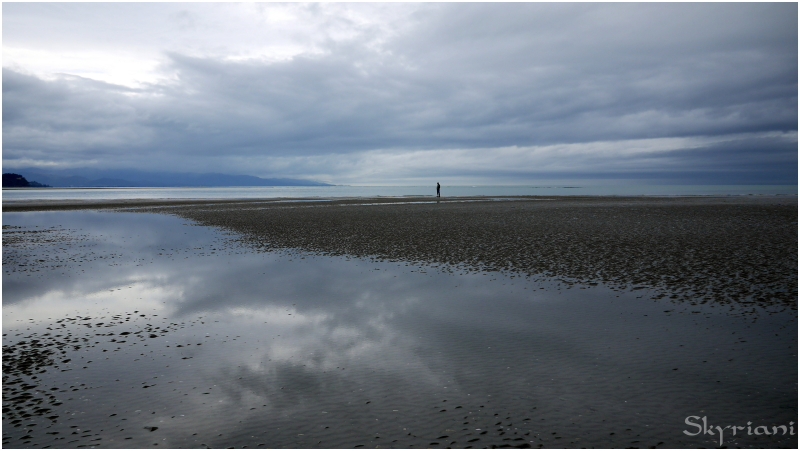 Contemplation at low tide