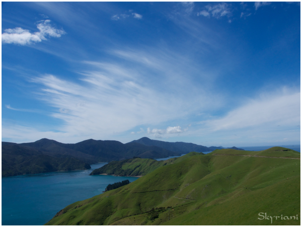 sky sea blue green nz marlborough frenchpass