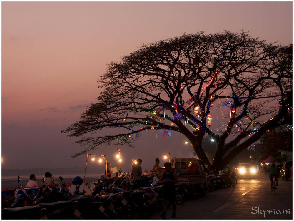 Food stall tree