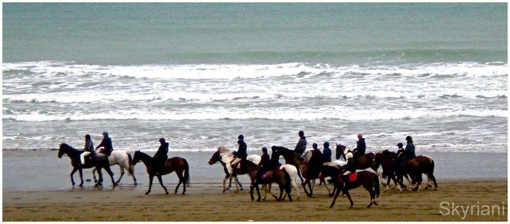 Beach Cavalcade