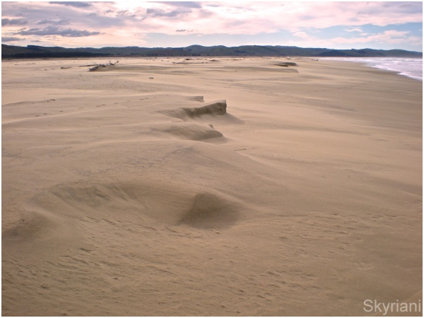 Sandforms